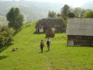 Rolling Hills Around Bran Castle