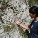 Explore & Admire Nature