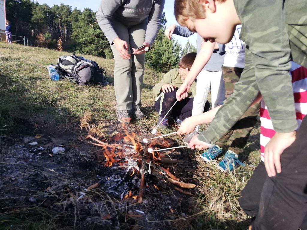survival workshops in Transylvania
